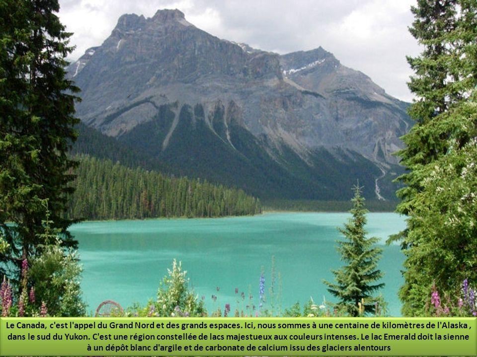 Parc National de Banff, situé dans les Rocheuses, cette chaîne de montagnes qui lie les États-Unis et la Colombie britannique, il abrite quelques uns