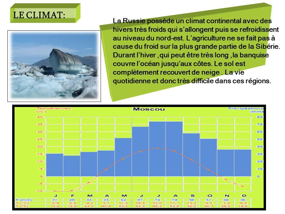 LE CLIMAT: La Russie possède un climat continental avec des hivers très froids qui sallongent puis se refroidissent au niveau du nord-est. Lagricultur