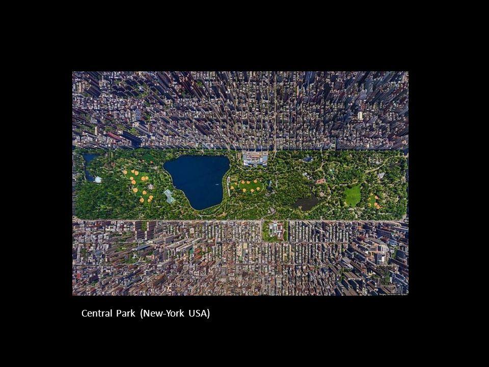 Central Park (New-York USA)
