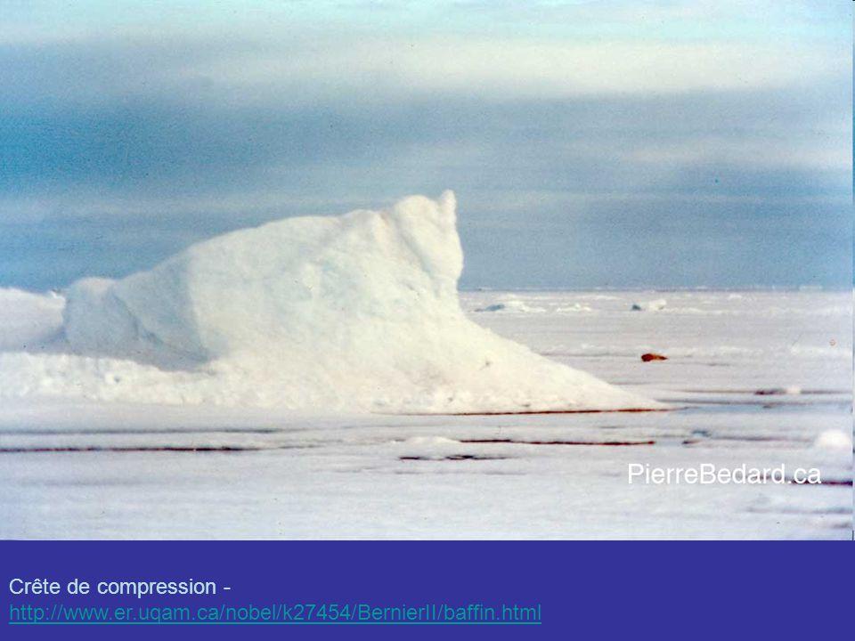 Inlandsis du Groenland : vue satellite, vue aérienne.