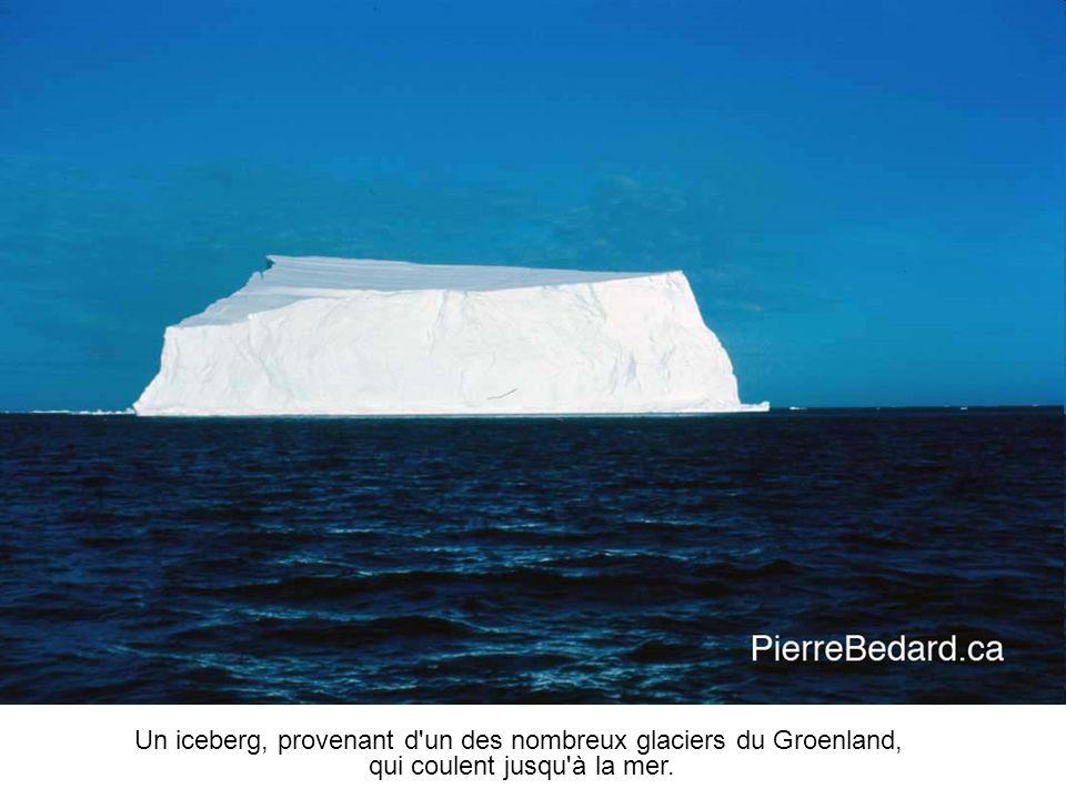 Un iceberg, provenant d un des nombreux glaciers du Groenland, qui coulent jusqu à la mer.