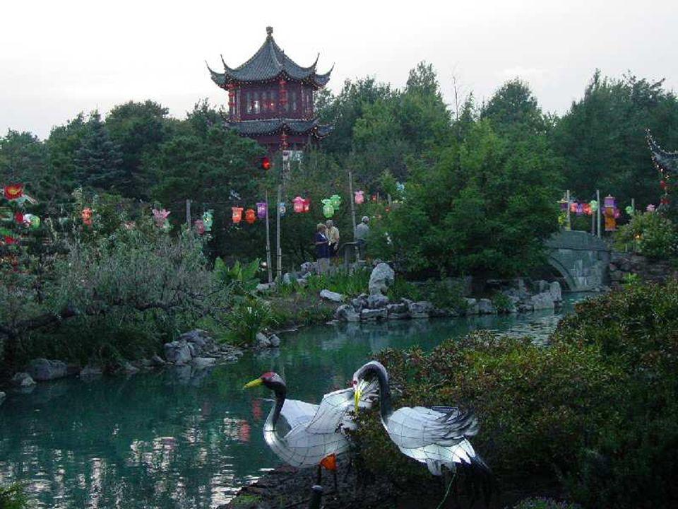 Les oiseaux font partie intégrante de la vie en Chine.