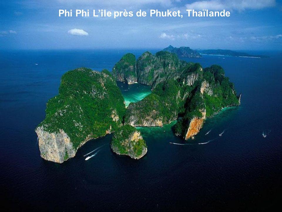 Phi Phi Lîle près de Phuket, Thaïlande