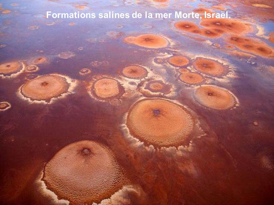 Formations salines de la mer Morte, Israël.