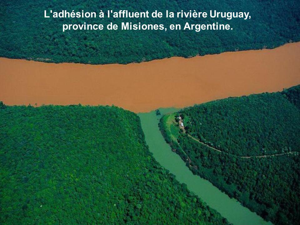 L'adhésion à l'affluent de la rivière Uruguay, province de Misiones, en Argentine.