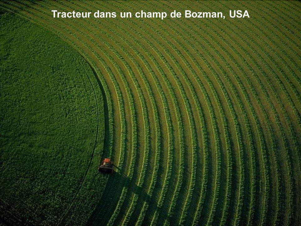 Tracteur dans un champ de Bozman, USA