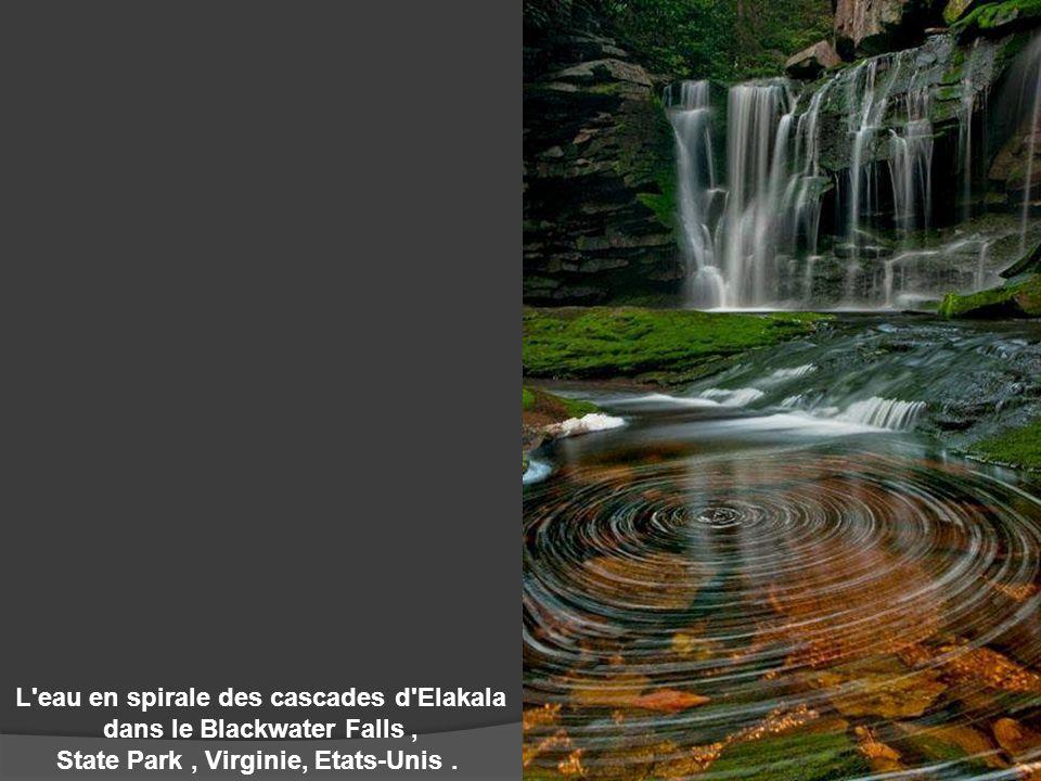 L'eau en spirale des cascades d'Elakala dans le Blackwater Falls, State Park, Virginie, Etats-Unis.