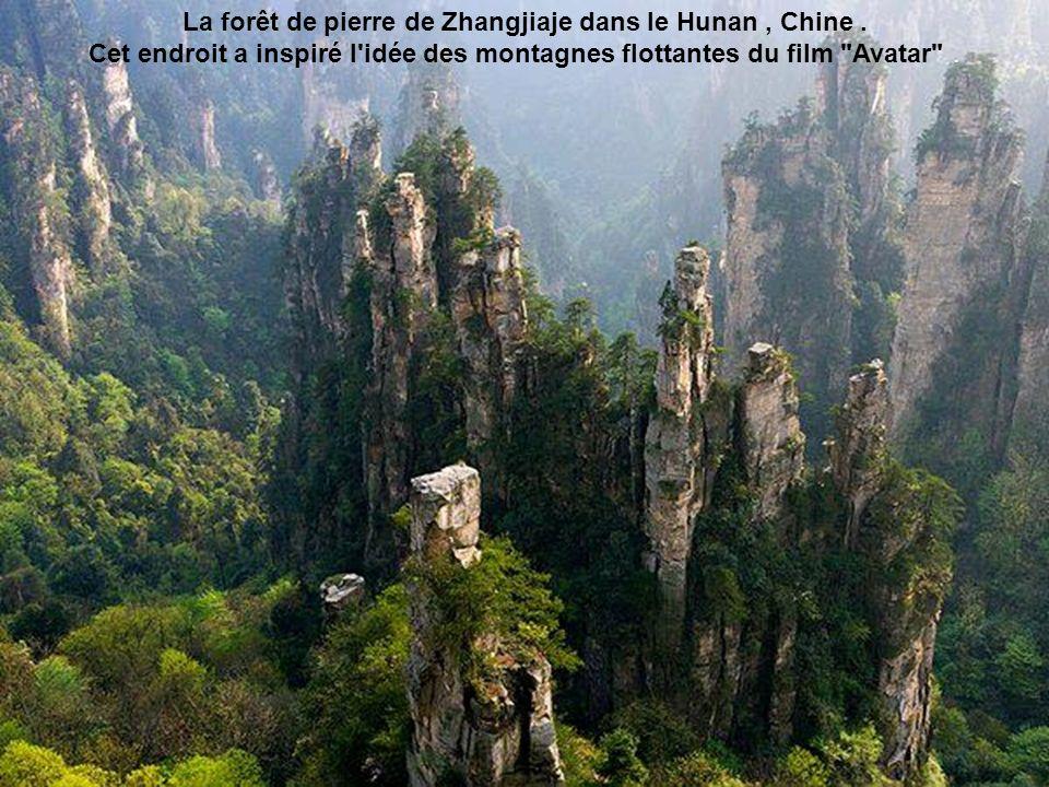 La forêt de pierre de Zhangjiaje dans le Hunan, Chine. Cet endroit a inspiré l'idée des montagnes flottantes du film