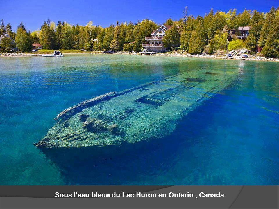 Sous l'eau bleue du Lac Huron en Ontario, Canada