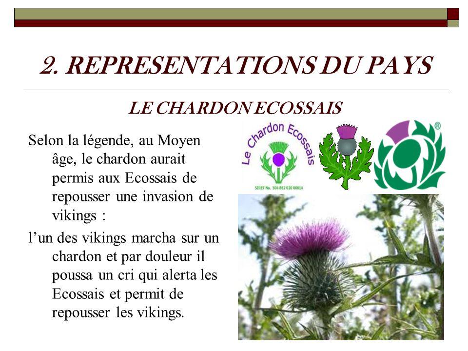 2. REPRESENTATIONS DU PAYS Selon la légende, au Moyen âge, le chardon aurait permis aux Ecossais de repousser une invasion de vikings : lun des viking