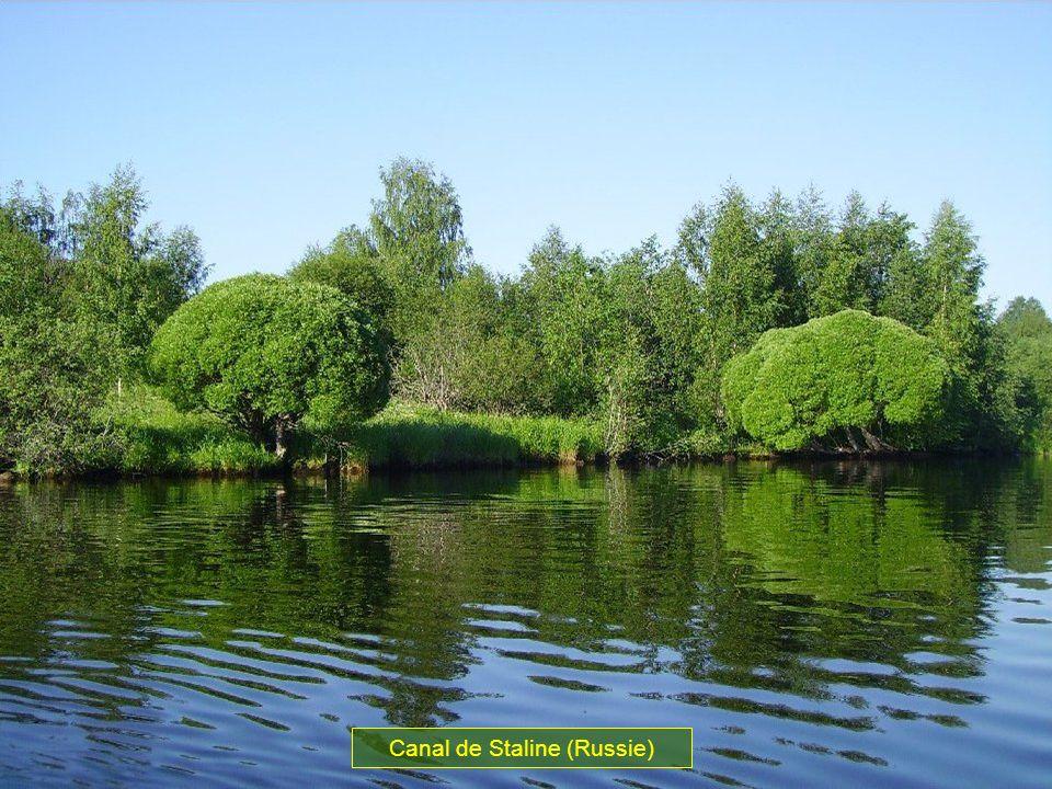 En 1931 Staline décide de construire un canal, qui fera communiquer la mer Blanche à la mer Baltique. La construction du canal a duré 20 mois et couté