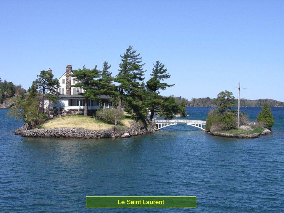 Les lacs du Nord américain forment le fleuve Saint Laurent à lest du Canada. Grace à cette voie maritime Chicago qui se trouve au centre des USA, est