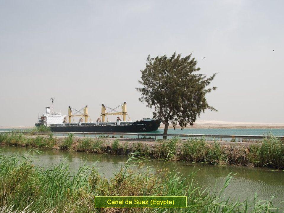 Ce canal forme la voie maritime la plus importante du mode il fait faire un économie de 8 000 kilomètres de linde au havre en comparaison avec la cont