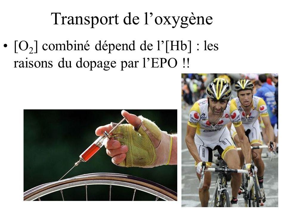 Transport de loxygène [O 2 ] combiné dépend de l[Hb] : les raisons du dopage par lEPO !! Insérer photo cycliste …..