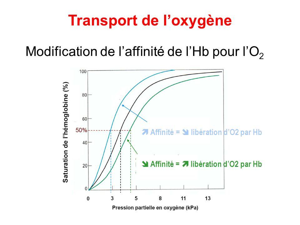 Modification de laffinité de lHb pour lO 2 Transport de loxygène Affinité = libération dO2 par Hb