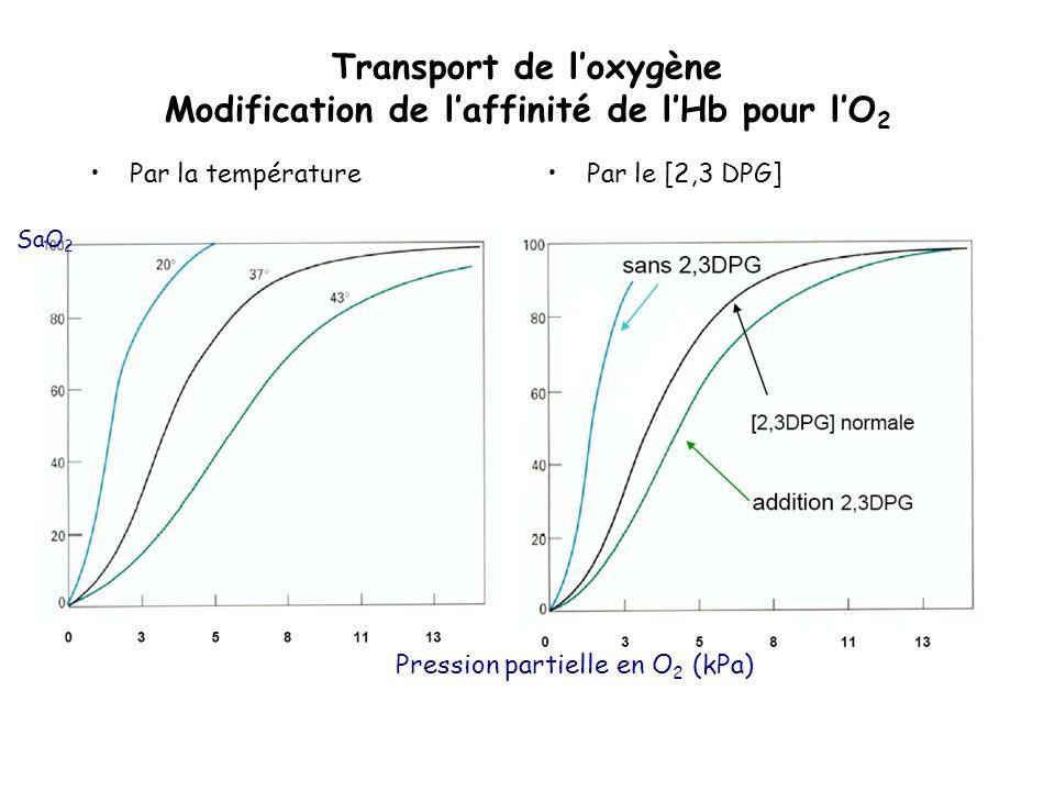 Transport de loxygène Modification de laffinité de lHb pour lO 2 Par la températurePar le [2,3 DPG] Pression partielle en O 2 (kPa) SaO 2