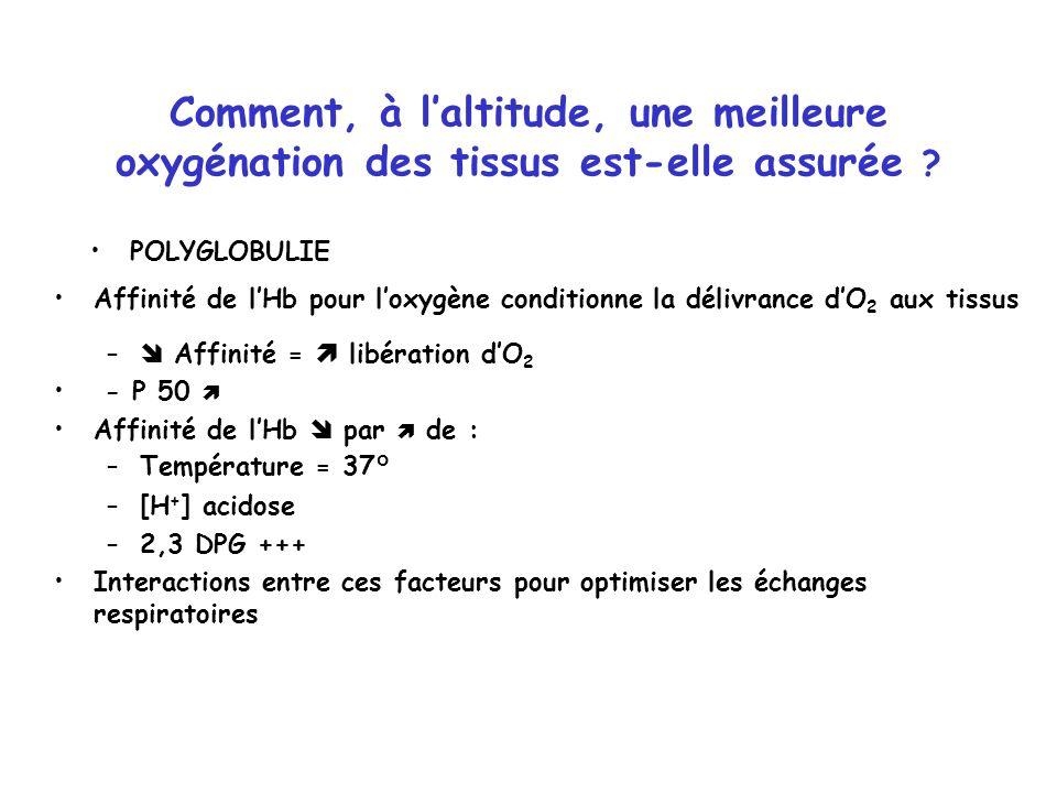 Comment, à laltitude, une meilleure oxygénation des tissus est-elle assurée ? POLYGLOBULIE Affinité de lHb pour loxygène conditionne la délivrance dO