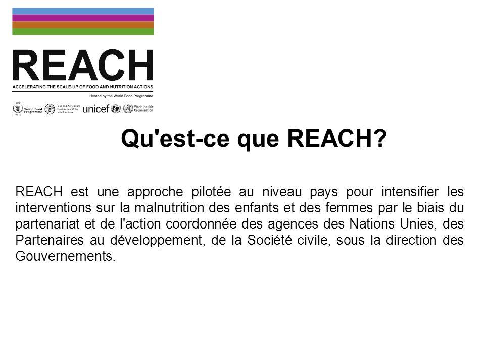 REACH est une approche pilotée au niveau pays pour intensifier les interventions sur la malnutrition des enfants et des femmes par le biais du partena