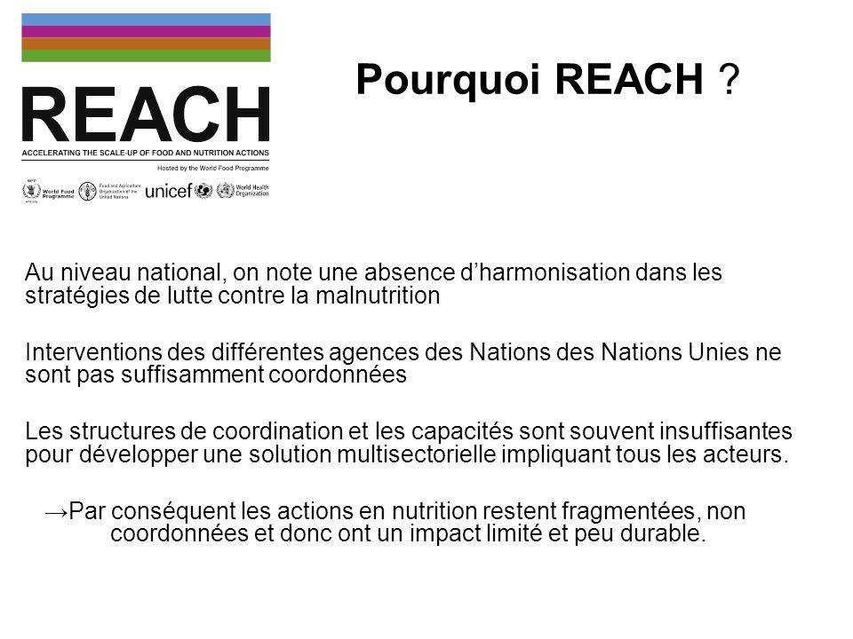 Pourquoi REACH ? Au niveau national, on note une absence dharmonisation dans les stratégies de lutte contre la malnutrition Interventions des différen