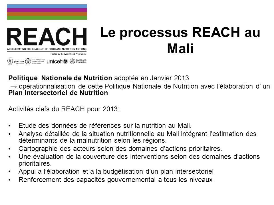 Coordination des activités du REACH Comité de Pilotage REACH: Chef dagences UNICEF, PAM, FAO, OMS Comité Technique REACH: Point focaux nutrition UNICEF, PAM, FAO, OMS, point focal nutrition basé au Ministère de la Santé, Facilitatrice REACH