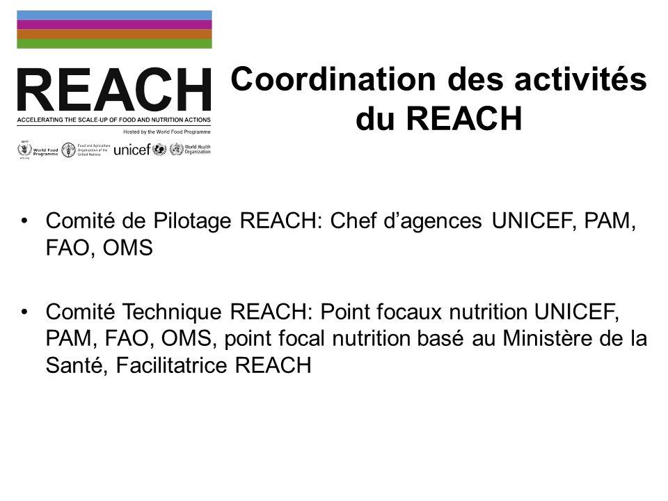 Coordination des activités du REACH Comité de Pilotage REACH: Chef dagences UNICEF, PAM, FAO, OMS Comité Technique REACH: Point focaux nutrition UNICE