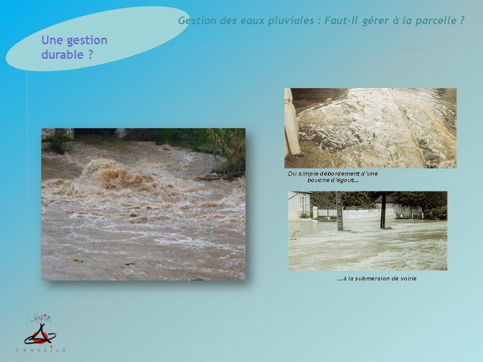 Gestion des eaux pluviales : Faut-il gérer à la parcelle ? Une gestion durable ?