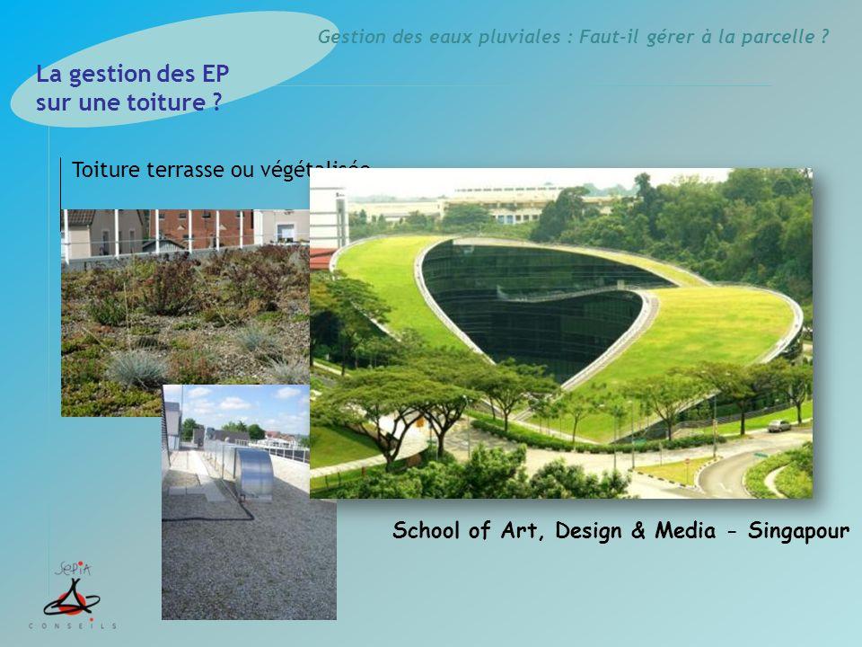Gestion des eaux pluviales : Faut-il gérer à la parcelle ? Toiture terrasse ou végétalisée La gestion des EP sur une toiture ? School of Art, Design &