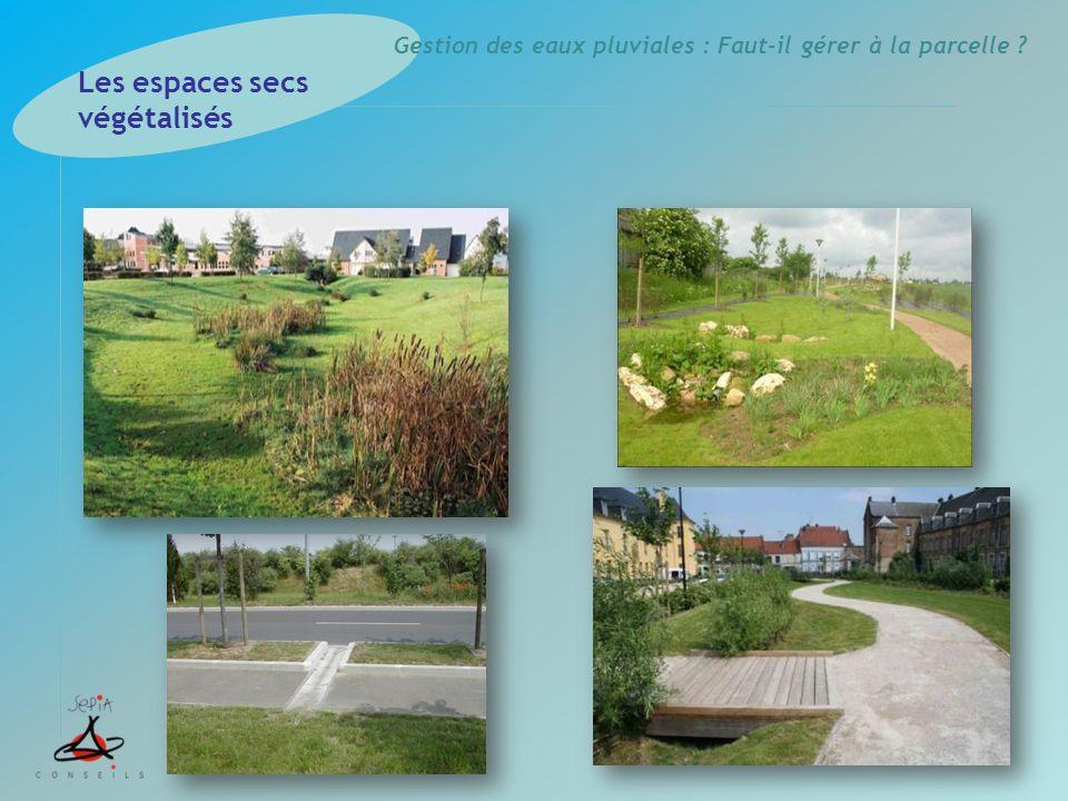 Gestion des eaux pluviales : Faut-il gérer à la parcelle ? Les espaces secs végétalisés