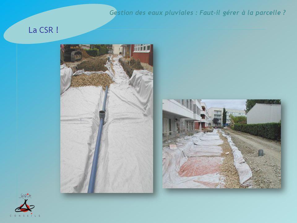 Gestion des eaux pluviales : Faut-il gérer à la parcelle ? La CSR !