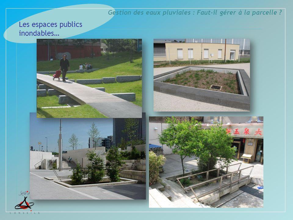 Gestion des eaux pluviales : Faut-il gérer à la parcelle ? Les espaces publics inondables…