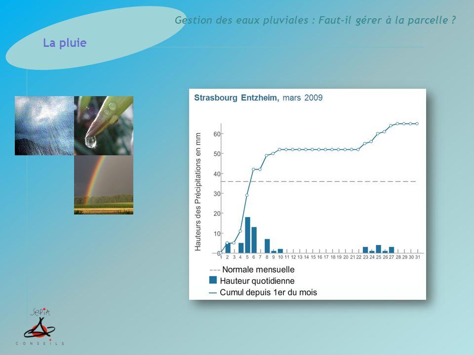 Gestion des eaux pluviales : Faut-il gérer à la parcelle ? La pluie