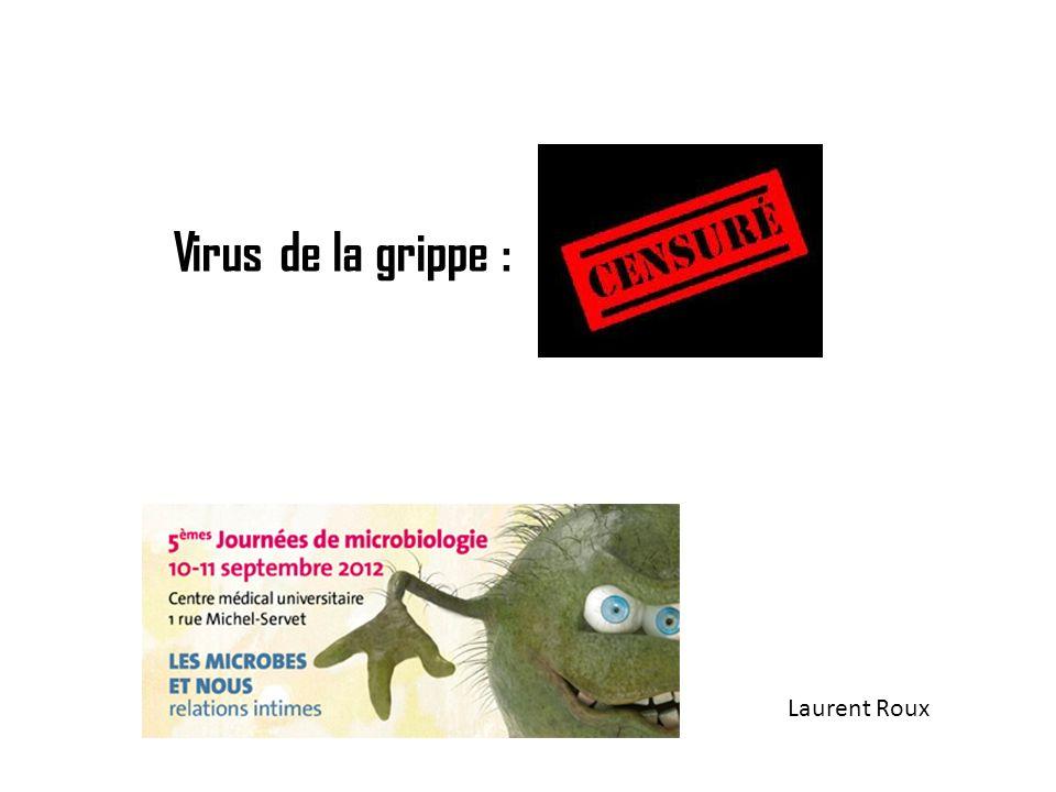 Les virus de la grippe de type A HA NA HA, NA = protéines virales externes Rôle dans: -entrée virus ds cellule (HA) -détachement virus de la cellule (NA)