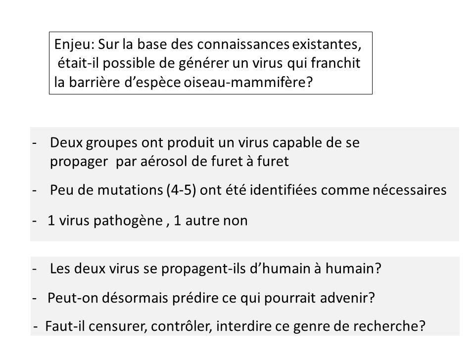 -Deux groupes ont produit un virus capable de se propager par aérosol de furet à furet Enjeu: Sur la base des connaissances existantes, était-il possible de générer un virus qui franchit la barrière despèce oiseau-mammifère.