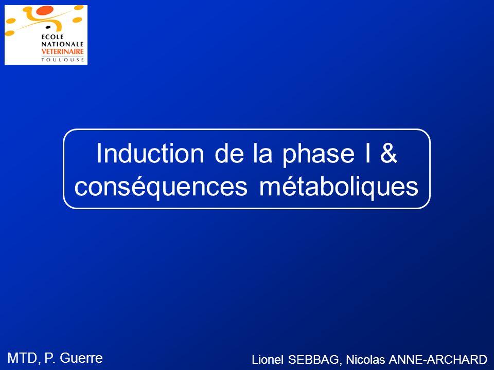 Induction de la phase I & conséquences métaboliques Lionel SEBBAG, Nicolas ANNE-ARCHARD MTD, P. Guerre