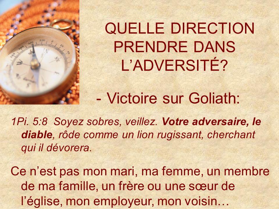 QUELLE DIRECTION PRENDRE DANS LADVERSITÉ. -Victoire sur Goliath: 1Pi.