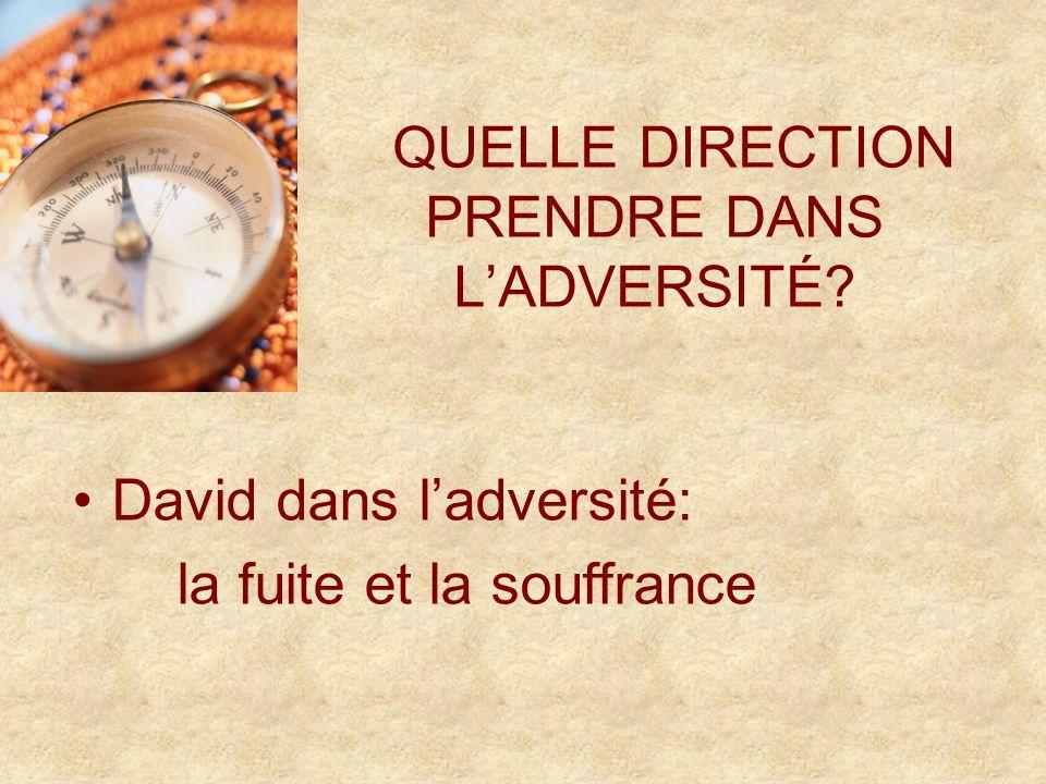 QUELLE DIRECTION PRENDRE DANS LADVERSITÉ David dans ladversité: la fuite et la souffrance