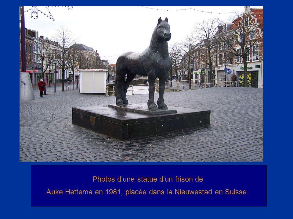 Photos dune statue dun frison de Auke Hettema en 1981, placée dans la Nieuwestad en Suisse.