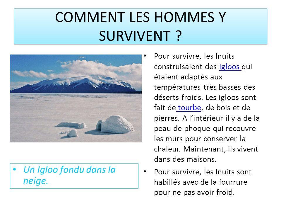 COMMENT LES HOMMES Y SURVIVENT .