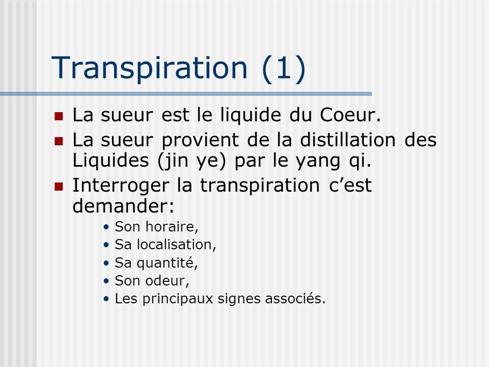Transpiration (1) La sueur est le liquide du Coeur. La sueur provient de la distillation des Liquides (jin ye) par le yang qi. Interroger la transpira