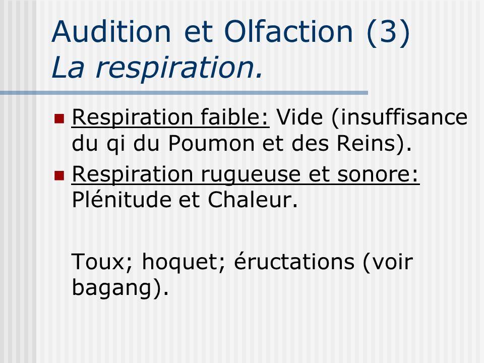 Audition et Olfaction (3) La respiration. Respiration faible: Vide (insuffisance du qi du Poumon et des Reins). Respiration rugueuse et sonore: Plénit