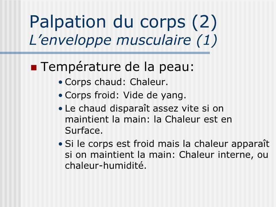 Palpation du corps (2) Lenveloppe musculaire (1) Température de la peau: Corps chaud: Chaleur. Corps froid: Vide de yang. Le chaud disparaît assez vit