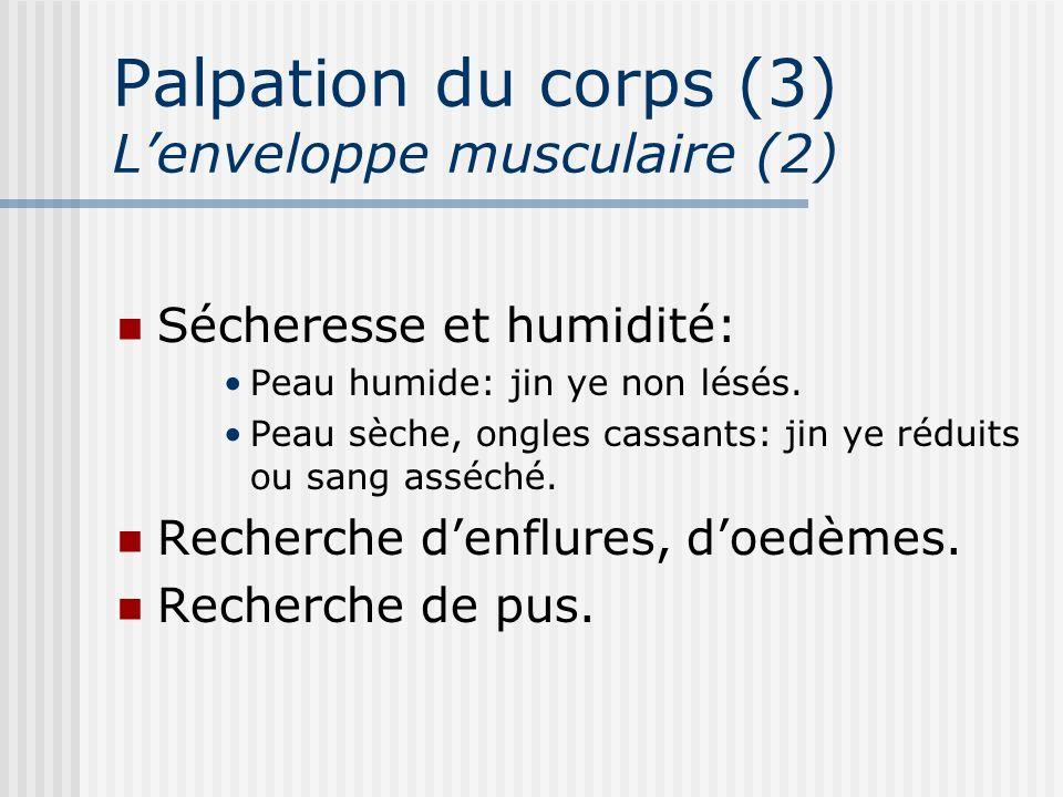 Palpation du corps (3) Lenveloppe musculaire (2) Sécheresse et humidité: Peau humide: jin ye non lésés. Peau sèche, ongles cassants: jin ye réduits ou