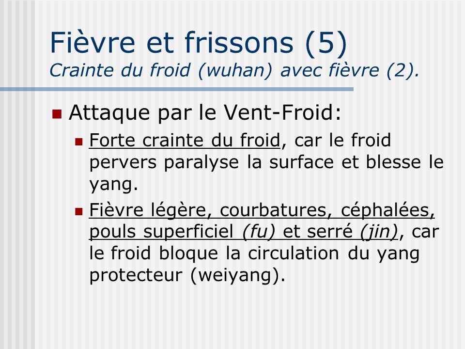 Fièvre et frissons (5) Crainte du froid (wuhan) avec fièvre (2). Attaque par le Vent-Froid: Forte crainte du froid, car le froid pervers paralyse la s