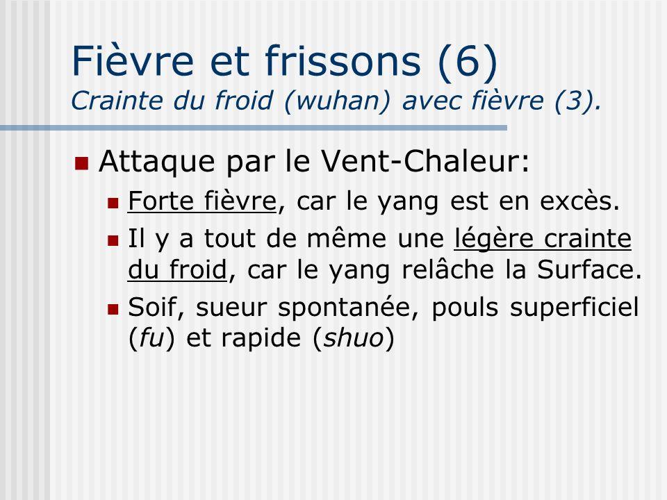 Fièvre et frissons (6) Crainte du froid (wuhan) avec fièvre (3). Attaque par le Vent-Chaleur: Forte fièvre, car le yang est en excès. Il y a tout de m