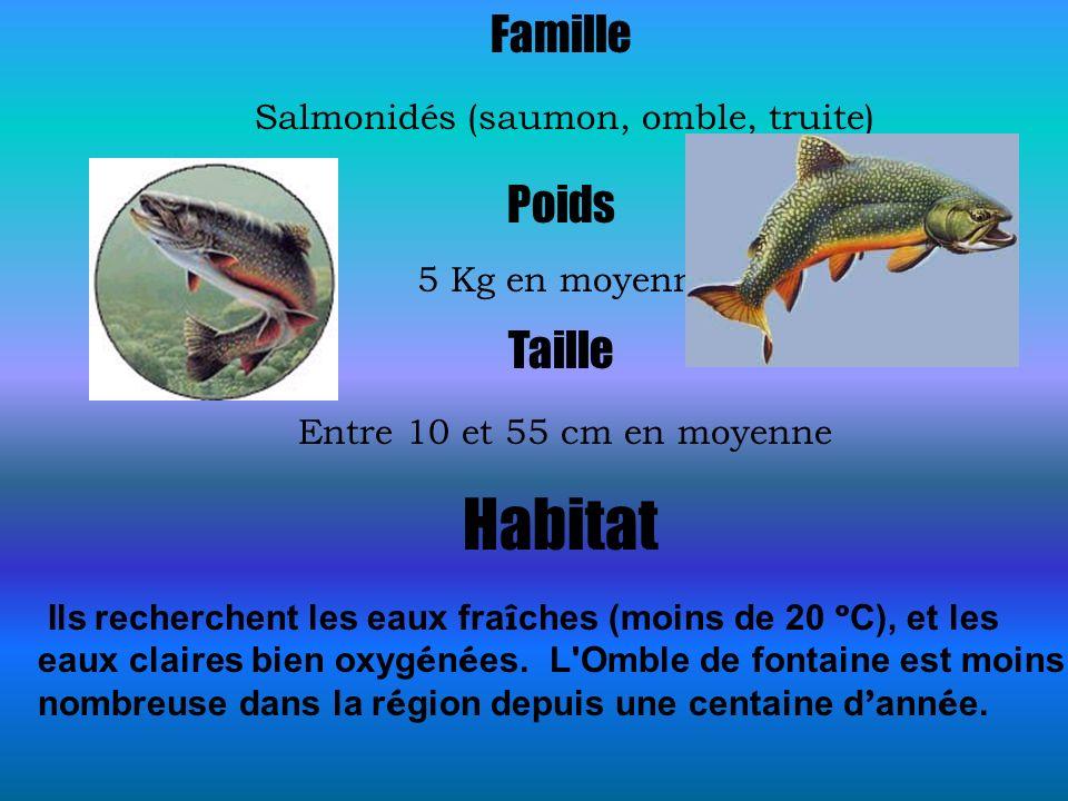 Famille Salmonidés (saumon, omble, truite) Poids 5 Kg en moyenne Taille Entre 10 et 55 cm en moyenne Habitat Ils recherchent les eaux fra î ches (moin