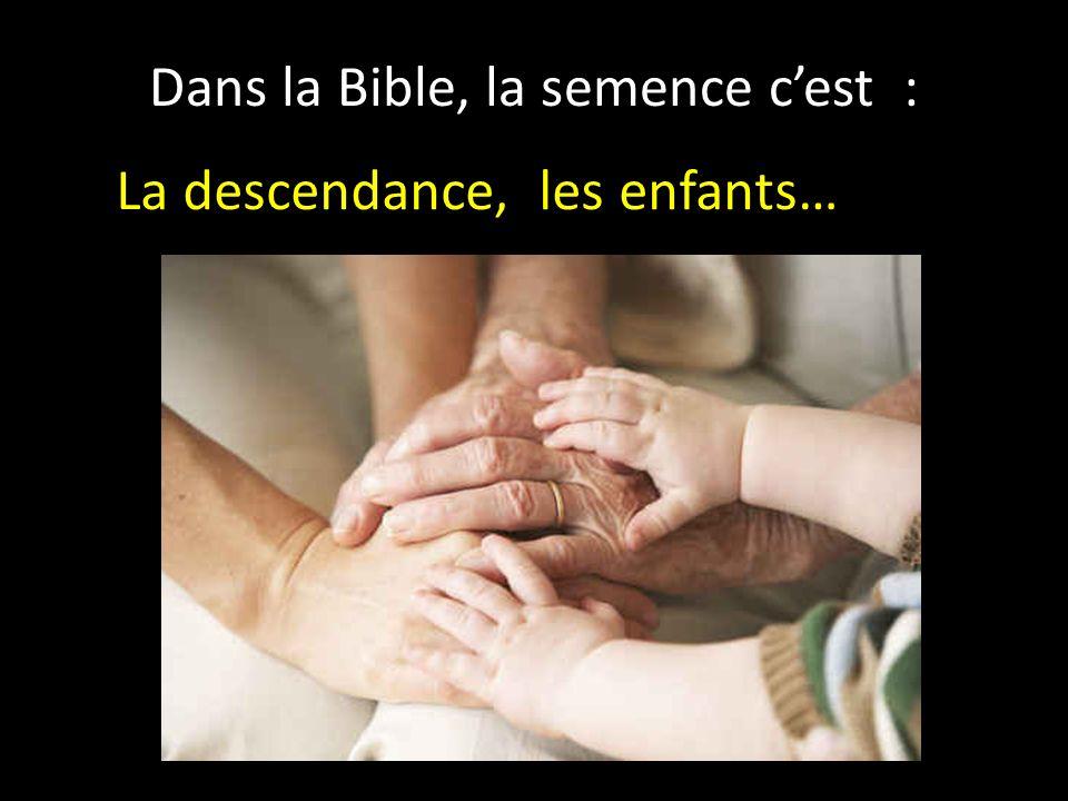 Dans la Bible, la semence cest : La descendance, les enfants…