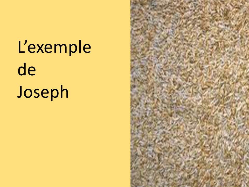 Lexemple de Joseph
