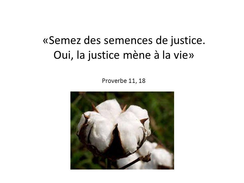 «Semez des semences de justice. Oui, la justice mène à la vie» Proverbe 11, 18