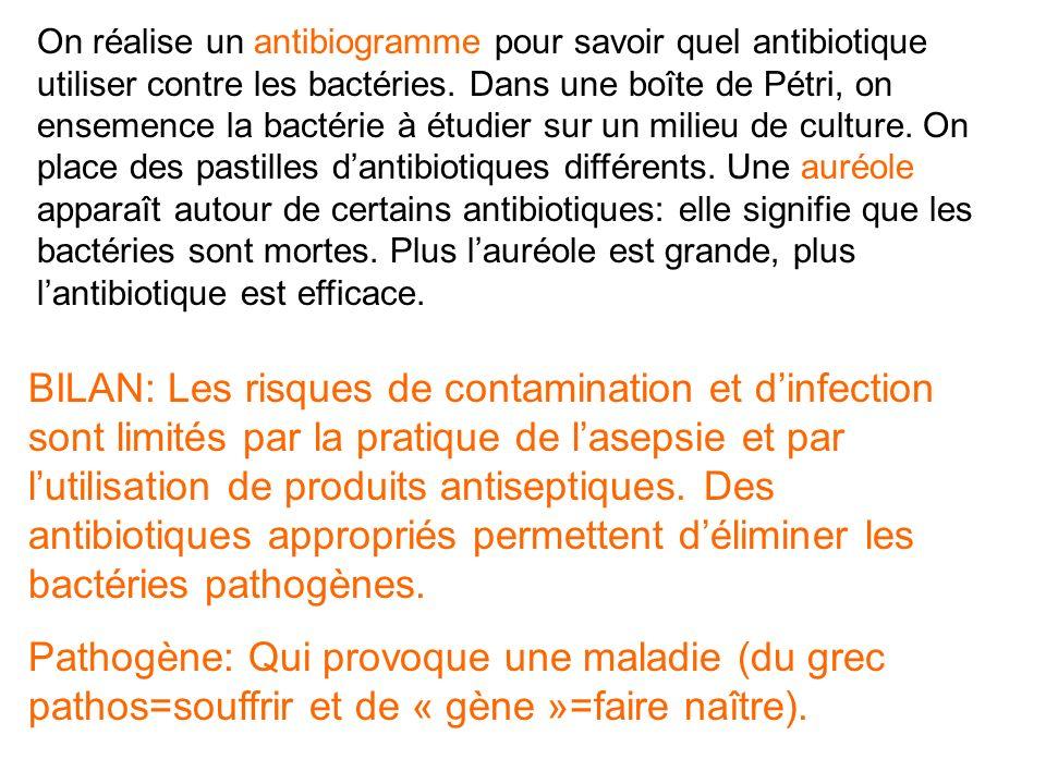On réalise un antibiogramme pour savoir quel antibiotique utiliser contre les bactéries.