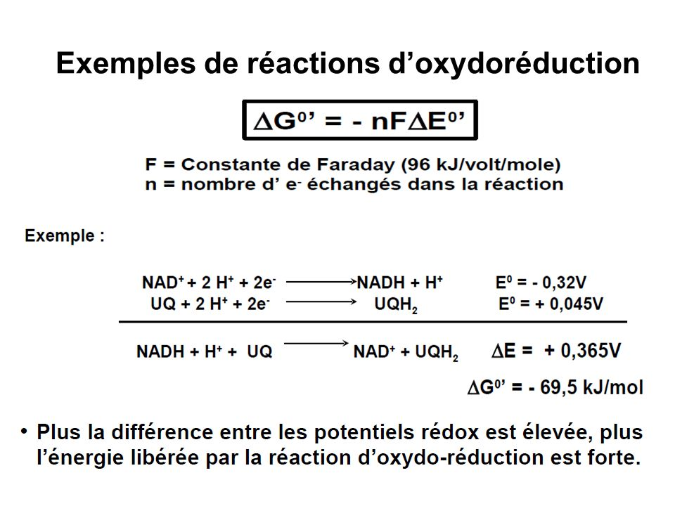 Exemples de réactions doxydoréduction